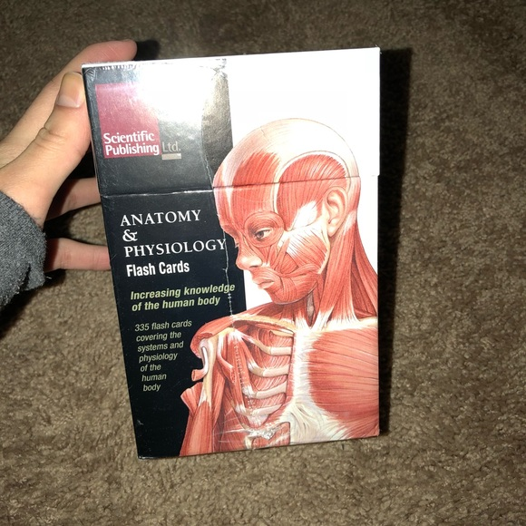Other | Anatomy Physiology Flash Card Set | Poshmark